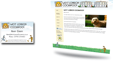 West London Cockapoo Website Design and Business Card